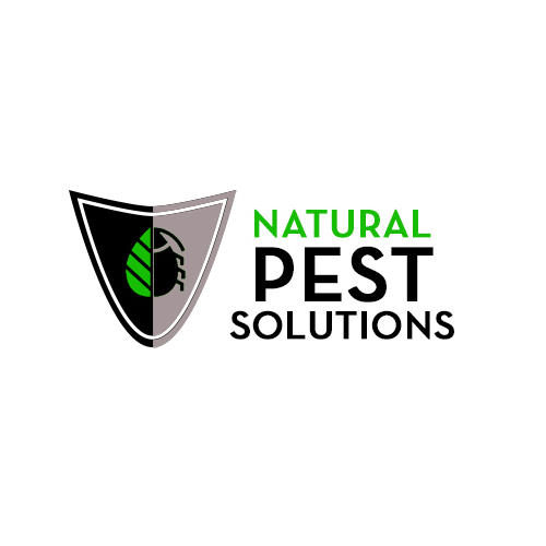 Make Certain You Google Local Pest Control Reviews To Make Certain You Find The Most Acceptable C ...